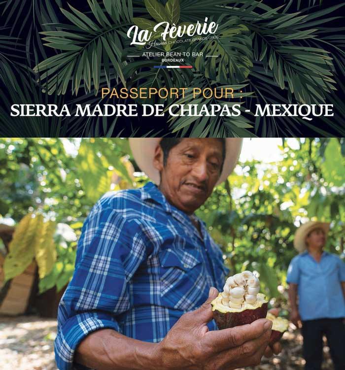 Chocolat d'origine Mexique, Sierra Madre des Chiapas